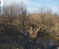 Čišćenje korita rijeke Mala Tinja